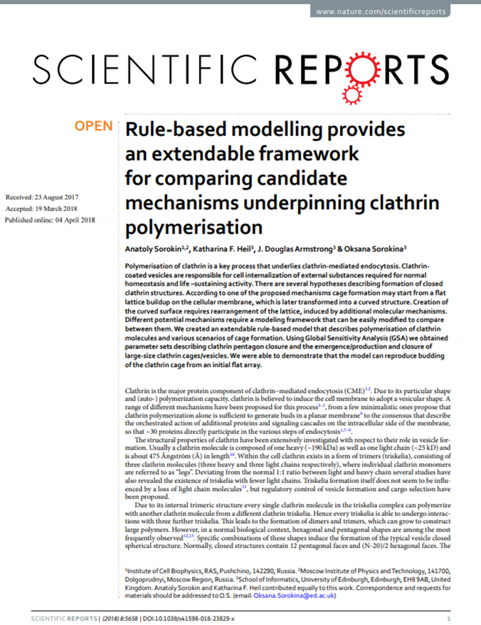 Rule-based modelling provides an extendable framework for comparing candidate mechanisms underpinning clathrin polymerisation
