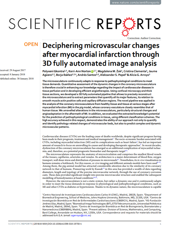 Deciphering microvascular changes after myocardial infarction through 3D fully automated image analysis
